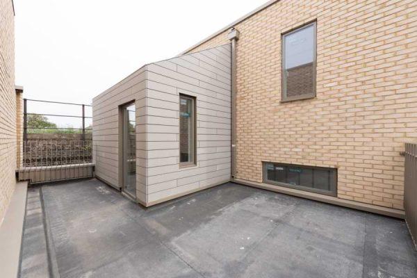 Blenheim Grove roof terrace